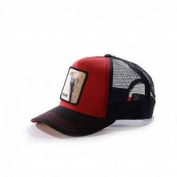 gorra Goorin woody wood